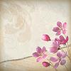 현실적인 꽃 봄 배경 | Stock Vector Graphics