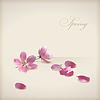 Kwiatowy, wiosna, wiśnia, kwiat, kwiaty | Stock Vector Graphics