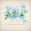 푸른 봄 꽃 물망초 카드 | Stock Vector Graphics