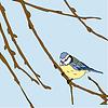 Kleine Vögel singen Lieder. Nahtlose Textur