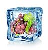 Ice Cube und blauen Trauben | Stock Foto