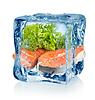 Ice Cube und Fisch | Stock Foto