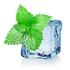 Ice cube and mint | Stock Foto