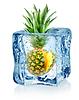 Eiswürfel und Ananas | Stock Foto