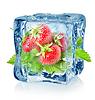 Eiswürfel und Erdbeere | Stock Foto