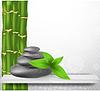 Zen Stein mit Bambus