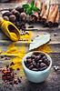 Stilleben mit Gewürzen und Kräutern | Stock Foto