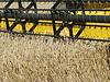 ID 3574743 | Wheat field harvesting with agricultural machinery | Foto stockowe wysokiej rozdzielczości | KLIPARTO