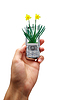Mobile phone of ecology | Stock Foto