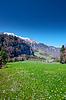 Alpine Meadow | Stock Foto