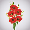 빨간 양 귀 비의 아름다운 축하 꽃다발 | Stock Vector Graphics