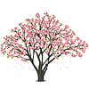 Japanische Kirschblüte | Stock Vektrografik