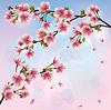 Hellen Hintergrund mit sakura blossom - Japanese