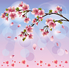Frühling Hintergrund mit sakura blossom - Japanese