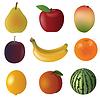 Fruchtansatz