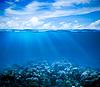 Unterwasser Korallenriff Meeresboden Ansicht mit Horizont und | Stock Photo