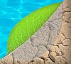 삶 생태와 물 개념 | Stock Foto