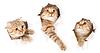 ID 3659859 | Zestaw jeden kot w bocznej rozdartym papierze otworu | Foto stockowe wysokiej rozdzielczości | KLIPARTO