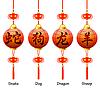 Chinesische Symbole auf der Laterne. Zeichen des Tierkreises
