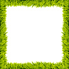 Green grass frame | Stock Illustration