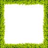Grüner Gras-Rahmen | Stock Illustration
