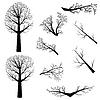 Kahlen Bäumen Silhouette