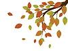 Fall-Blätter auf Zweig | Stock Vektrografik