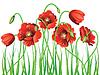 Poppy mit Grass | Stock Vektrografik