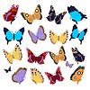 Große Sammlung von bunten Schmetterlingen