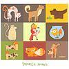 Haustiere, Katzen, Hunde und ihre Aktionen, Emotionen. Set