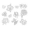 Frühling Blumen und Schmetterlinge Realistische Skizzen