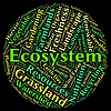 Ecosystem word shows eco biosystem and ecology | Stock Illustration