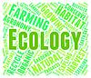Día de la Tierra Ecología y Medio Ambiente palabra significa | Ilustración
