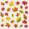 Gelb Orange Rot Fliegen Herbst-Blatt-Hintergrund
