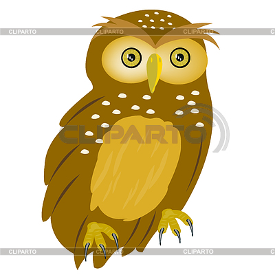 Drawing of owl | Stock Vector Graphics |ID 3446914