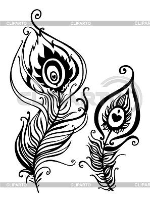 Красивые перья павлина | Векторный клипарт |ID 3684082