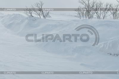 Зимний пейзаж | Фото большого размера |ID 3425278