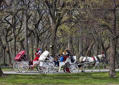 Central Park, New York | Foto stockowe wysokiej rozdzielczości |ID 3438746