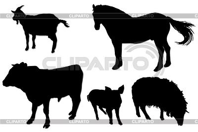 Schwarzen Silhouetten von Haustieren | Foto mit hoher Auflösung |ID 3521987