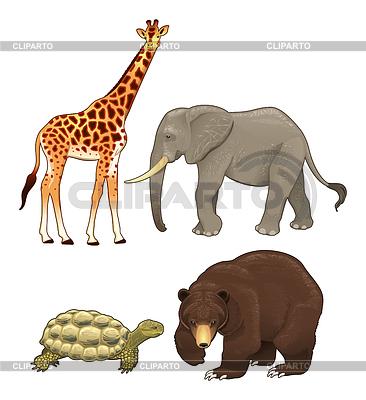 Dzikie zwierzęta | Klipart wektorowy |ID 3497641