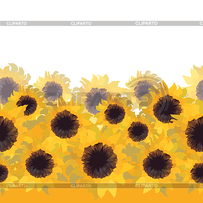 Sunflower flower seamless background | Klipart wektorowy |ID 3689138