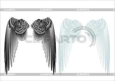 Weißen und schwarzen Flügeln | Stock Vektorgrafik |ID 3508827