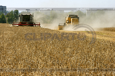 Wheat field harvesting with agricultural machinery | Foto stockowe wysokiej rozdzielczości |ID 3574742