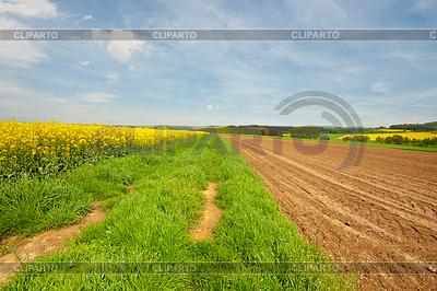 Rolnictwo | Foto stockowe wysokiej rozdzielczości |ID 3574968